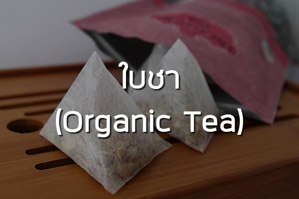 ใบชา (Organic Tea)